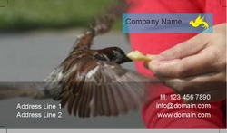 Business-card-15