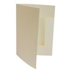 Plain Presentation Folders