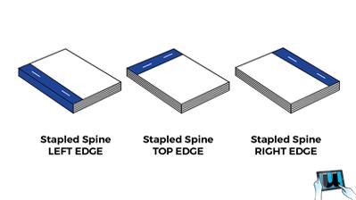 Stapled Spine